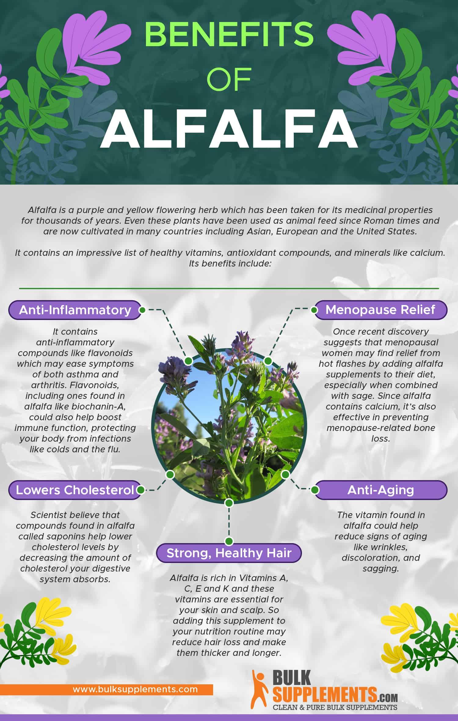 Benefits of Alfalfa