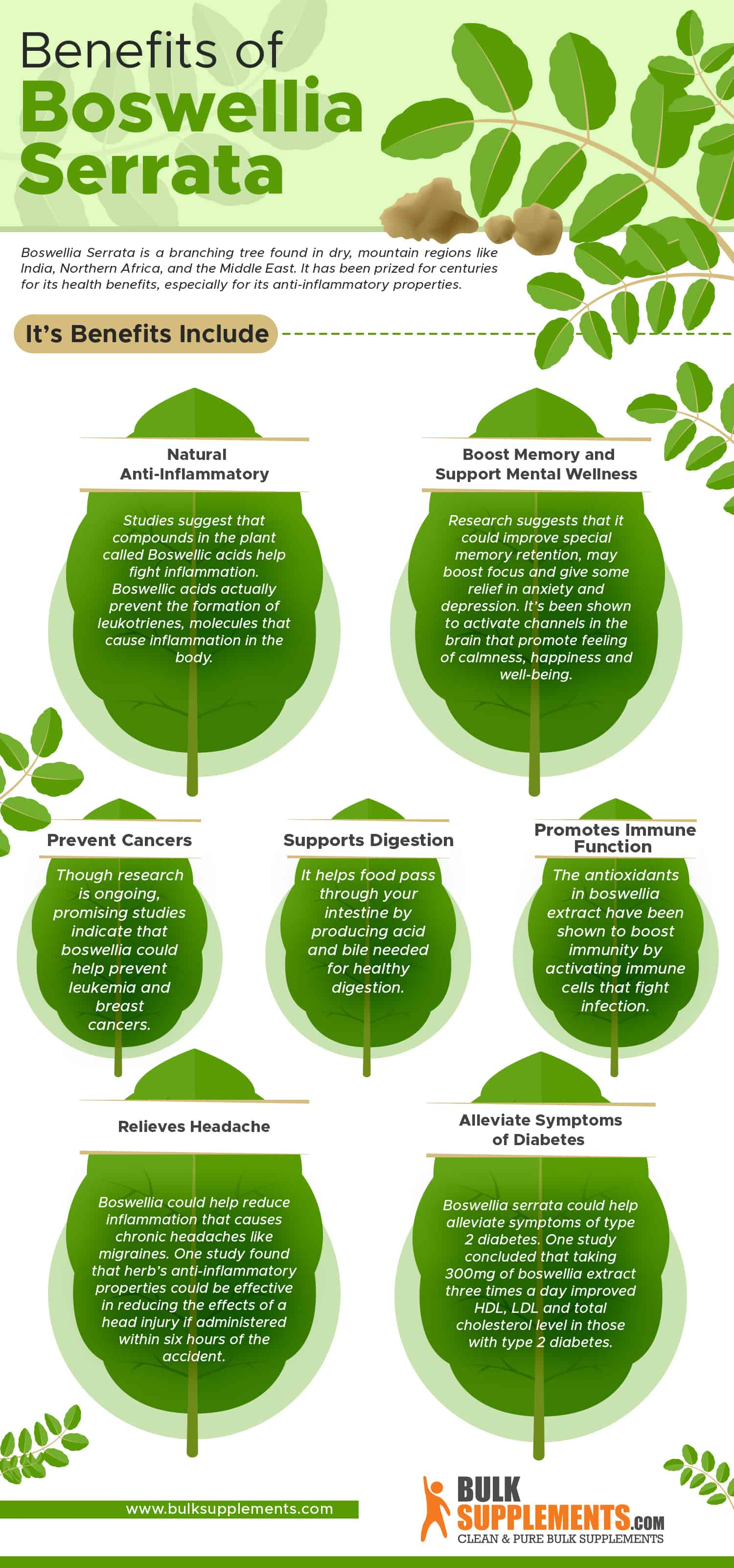 benefits of boswellia serrata